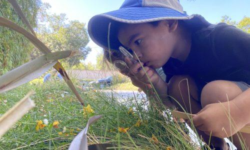 outdoor stem activities